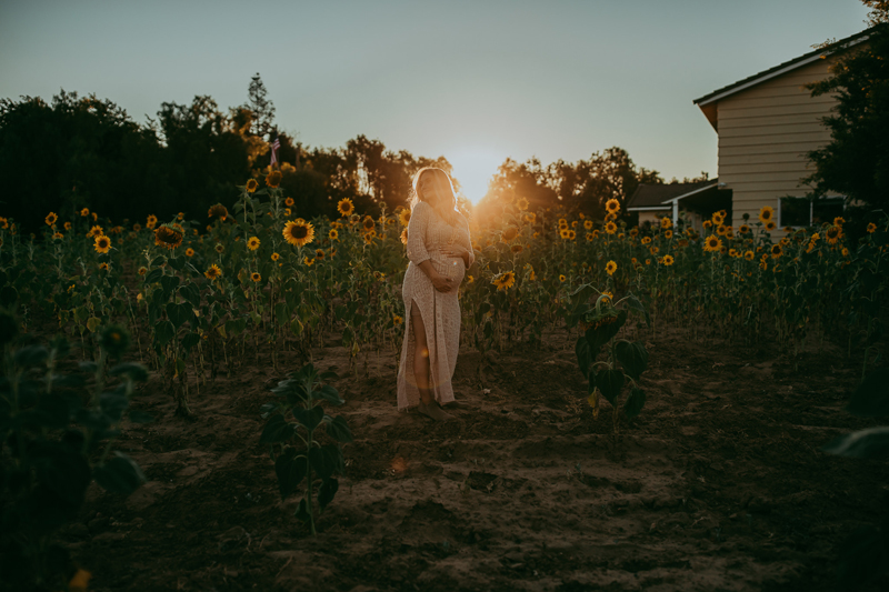 Maternity Photography, woman in sunflower field at sunset