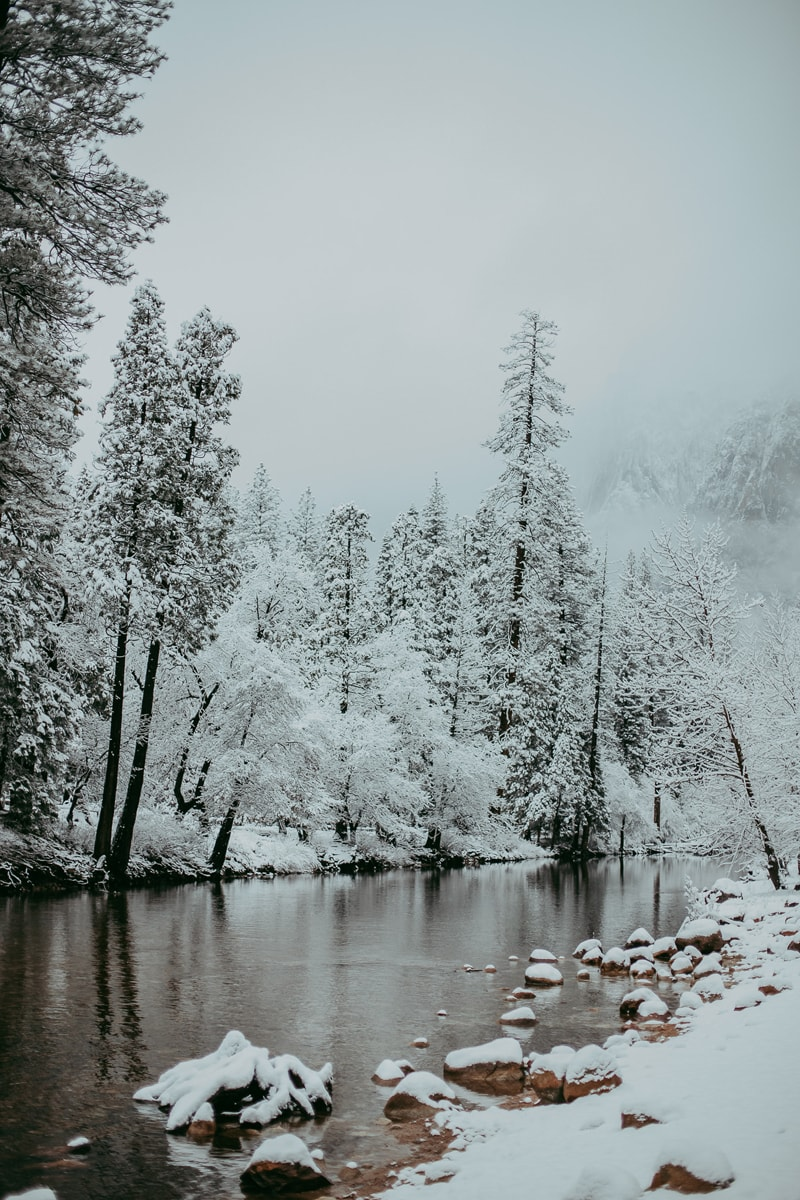 Travel Photography, snow covered trees and a creek